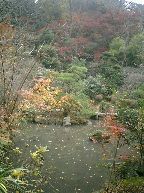 07_06.12.17鎌倉市長谷「光則寺」紅葉の季節