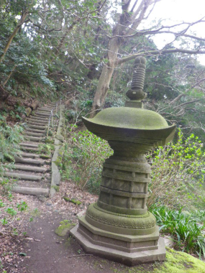 13)  17.03.30 鎌倉「安国論寺」 細身ながらも高木の古い桜が咲き揃った頃