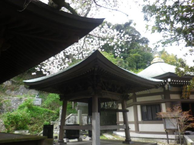 08) 左手前の屋根は祖師堂 (法華堂)。お約束?の赤木圭一郎像は、鐘楼屋根左下へ さりげなく写り込ませた。タイ国渡来金色釈迦尊像が祀られている、右奥の本師堂 では法要が営まれて