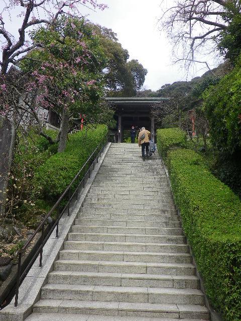 02)    17.04.10 鎌倉「荏柄天神社」の桜