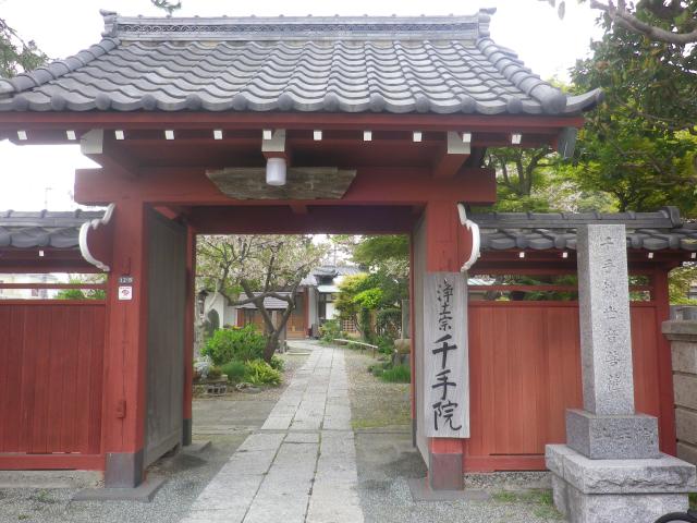 01)     17.04.22 鎌倉「千手院」の桜