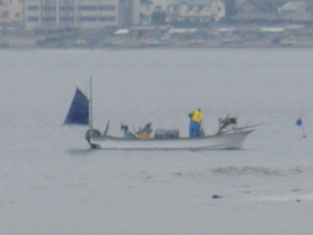 02)   17.04.22 逗子マリーナ(~飯島地区)から、曇天朝の海を漫然と撮っただけ。