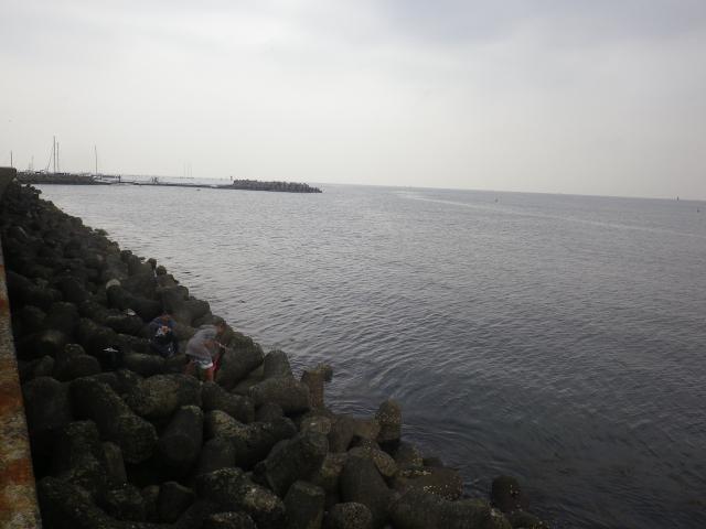 09)   17.04.22 逗子マリーナ(~飯島地区)から、曇天朝の海を漫然と撮っただけ。