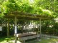 10-00)   表面が磨かれた、とても厚い石のテーブル&ベンチ。 17.05.05端午 鎌倉「安国論寺」立夏