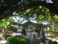 03)   17.05.05端午  鎌倉「安養院」立夏