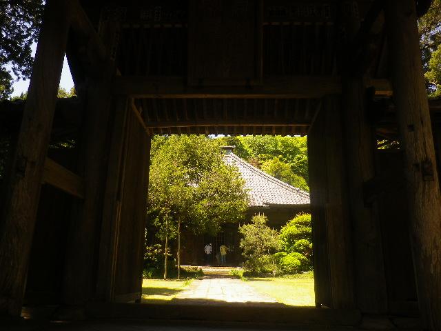 05)    17.05.05端午  鎌倉「寿福寺」立夏。 中門を潜ることができる期間の日。