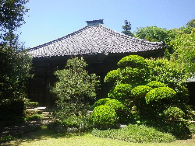 08)    17.05.05端午  鎌倉「寿福寺」立夏。 中門を潜ることができる期間の日。