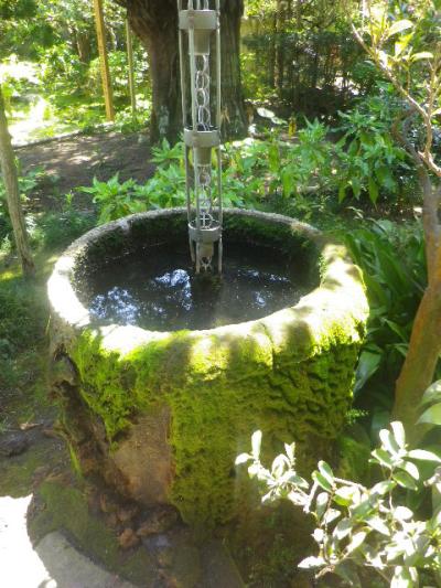 13-2)    17.05.05端午  鎌倉「寿福寺」立夏。 中門を潜ることができる期間の日。