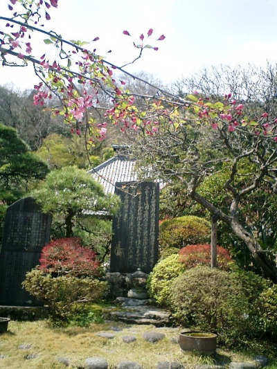 11) 鎌倉長谷「光則寺」。 境内の石碑