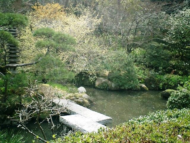 16) 鎌倉長谷「光則寺」。 日本庭園。