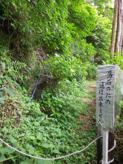 03)  ' あじさいの小径 ' 、数年続く6~7m程の閉鎖区間。    17.05.25 鎌倉「御霊神社」を参拝した