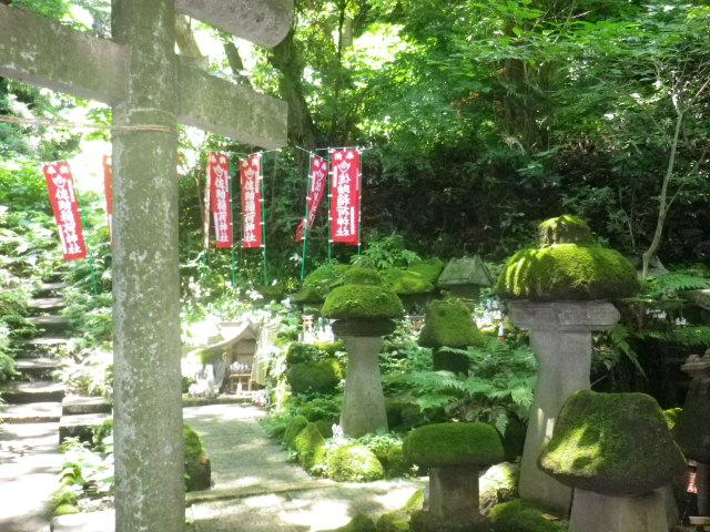 G01) 写真c03)左方向    17.06.15 鎌倉「佐助稲荷神社」参拝