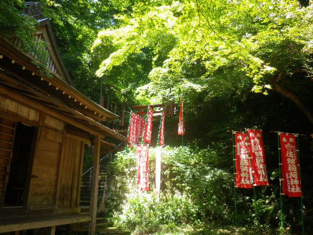 H01) 中央の、奥の院 本殿方向。    17.06.15 鎌倉「佐助稲荷神社」参拝