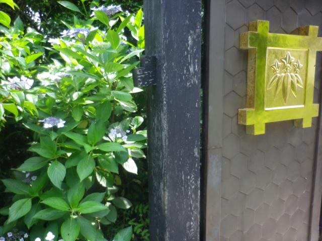 02-1)   17.06.20 鎌倉「常栄寺」