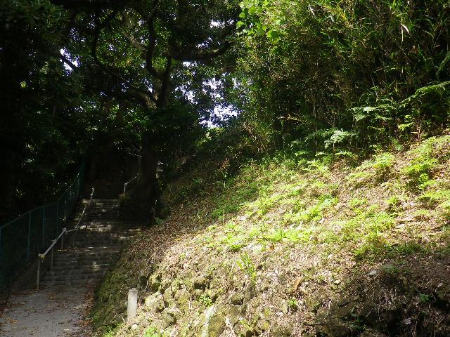 C01)  大殿裏、古道の階段手前    17.06.23 鎌倉「光明寺」記主庭園の蓮が咲き始めた