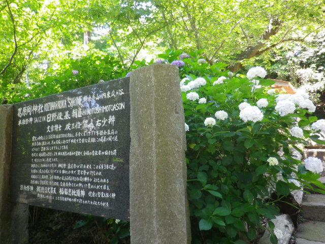 "C01-1) 「葛原岡神社」    17.06.15 鎌倉「葛原岡神社」 と "" 日野俊基 墓所 """