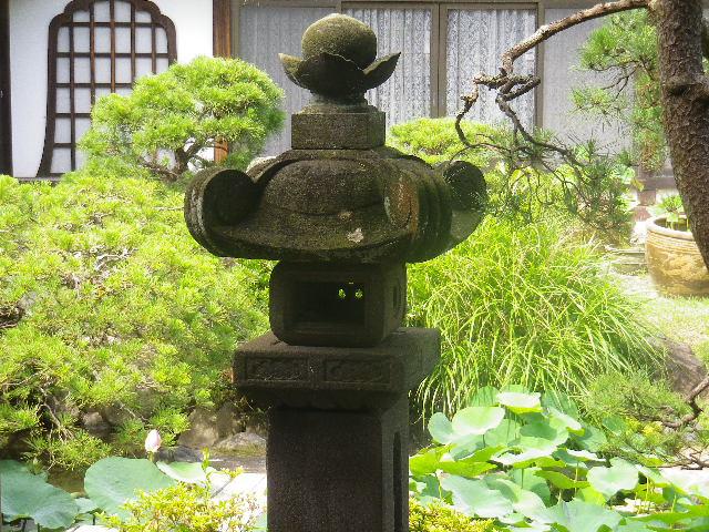 02-2) 17.07.03 鎌倉「光明寺」紫陽花に、蓮の開花が追いついて競艶。