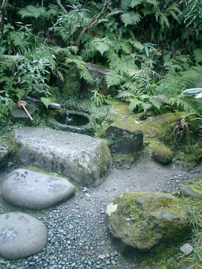 C03    07.02.21 鎌倉「瑞泉寺」梅の季節