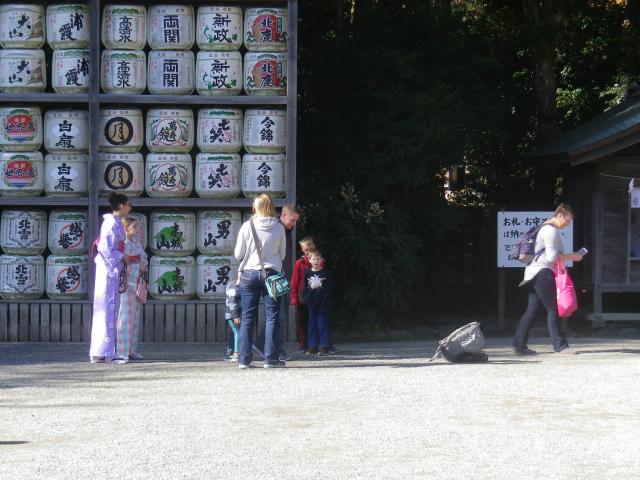 D02-1) 着物を召した外国人さん 17.11.24 初冬の 鎌倉「鶴岡八幡宮」