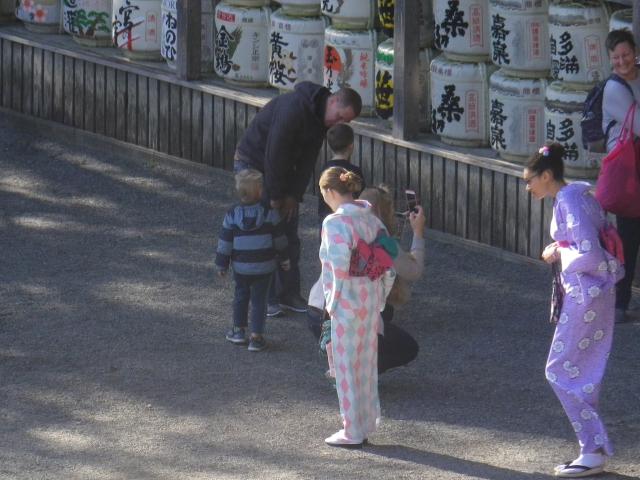 D02-2) 着物を召した外国人さん 17.11.24 初冬の 鎌倉「鶴岡八幡宮」