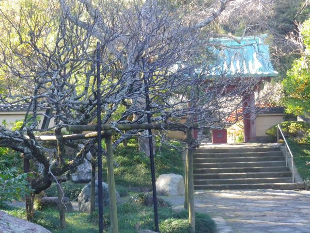 01-1)    17.11.25 初冬の鎌倉「光則寺」