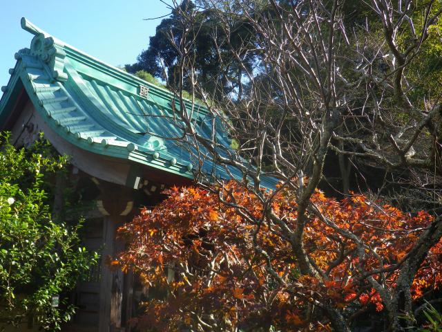 02-1)    17.11.25 初冬の鎌倉「光則寺」
