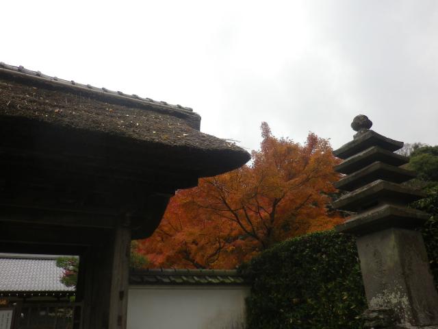 02)    17.11.30 鎌倉「長寿寺」 紅葉の頃