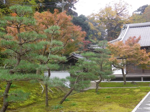 05)    17.11.30 鎌倉「長寿寺」 紅葉の頃