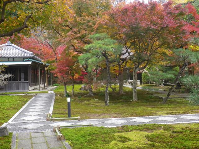07)    17.11.30 鎌倉「長寿寺」 紅葉の頃