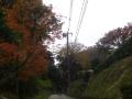 01) 通称 ' 鎌倉街道 ' から「長寿寺」脇からの登り口    17.11.30 鎌倉 ' 亀ヶ谷坂 '