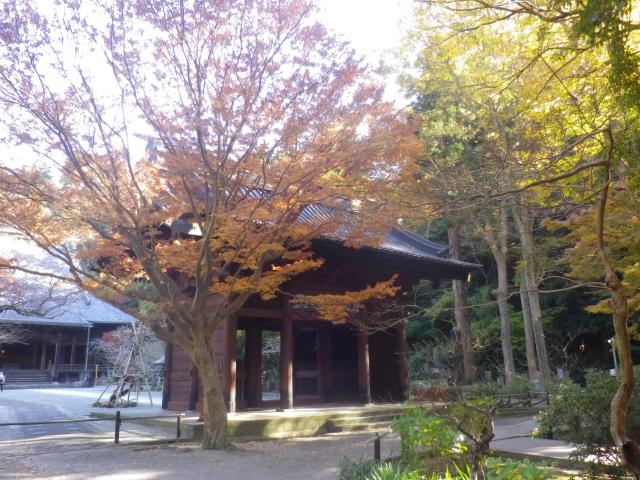A01)  山門周辺   17.12.06 鎌倉「妙本寺」紅葉の頃