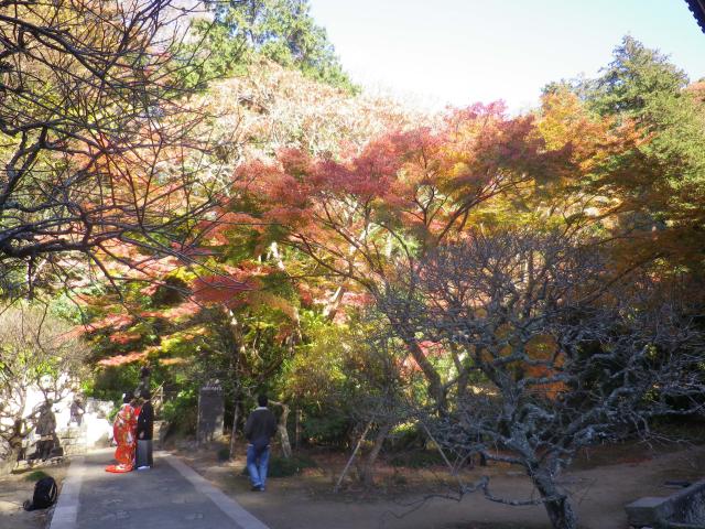 F05) 祖師堂周辺 _ 左側の墓地参道方向  17.12.06 鎌倉「妙本寺」紅葉の頃