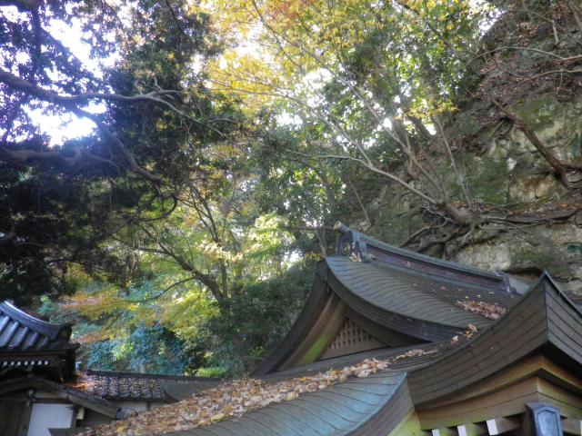 17)   17.12.12 鎌倉「安国論寺」今日は富士山が見えたヨ