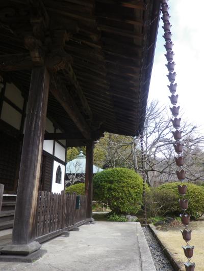 02-3) 18.02.23 鎌倉「浄光明寺」梅が咲く頃