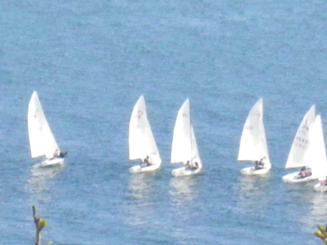 08-3) 逗子湾のディンギー