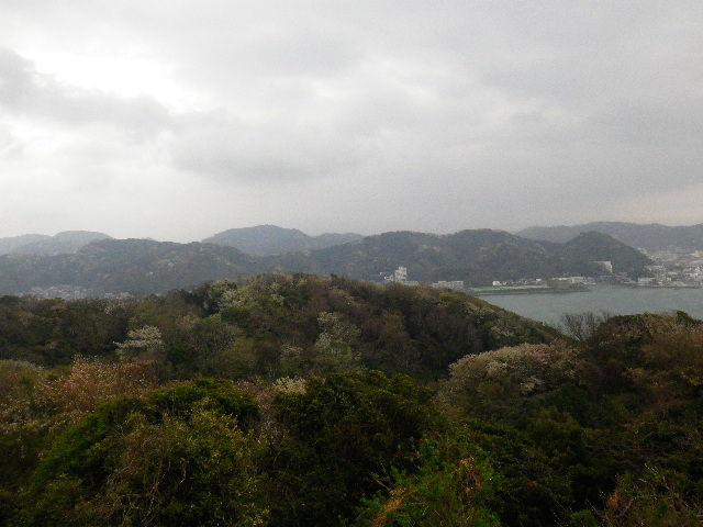 15-1) 15.04.01 「逗子市立 披露山公園」の桜