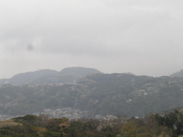 18-1) 15.04.01 「逗子市立 披露山公園」の桜