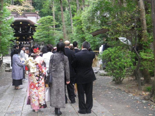 04) 15.04.04雨 鎌倉「鶴岡八幡宮」雨の観桜
