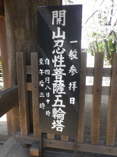 04) 15.04.06 鎌倉「極楽寺」桜が散り始める頃