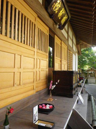 06-2) 15.04.06 鎌倉「成就院」桜咲く時期の終焉を見届ける
