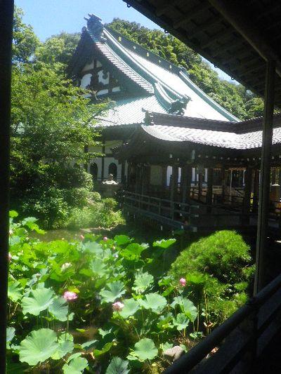 03-1)  15.08.05 鎌倉「光明寺」