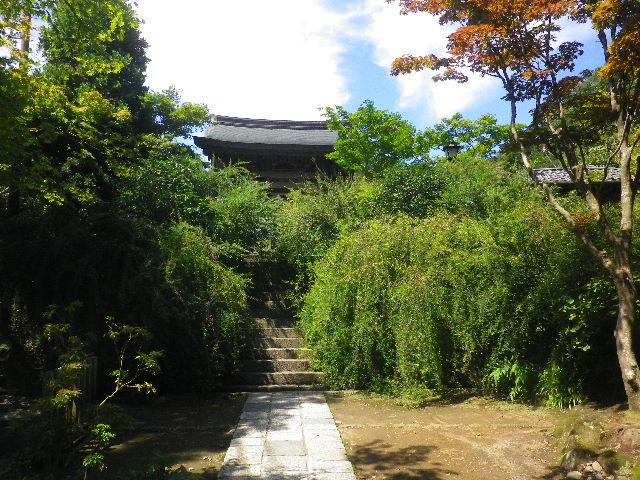 01-1) 15.09.12 鎌倉「海蔵寺」萩が咲く頃