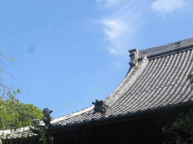 36-1)  15.09.19 鎌倉「宝戒寺」萩をかき分けて境内を歩く季節