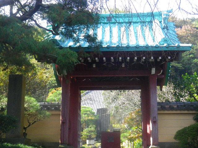 00)   15.11.17 初冬の鎌倉「光則寺」