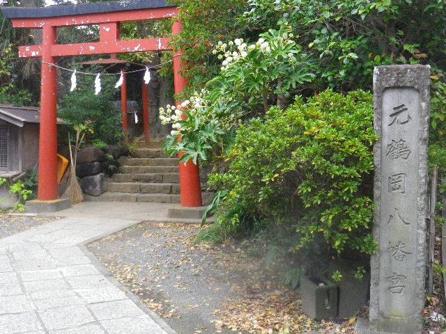 01)   15.11.23 初冬の鎌倉「元鶴岡八幡宮_由比若宮」