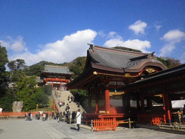 03-2a) ' 舞殿 ' _ 15.11.30 鎌倉「鶴岡八幡宮」葉が色づき始める頃