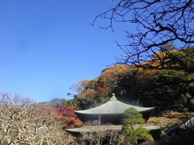 30) _ 15.12.05 鎌倉「瑞泉寺」紅葉は、微妙に もう少し先。
