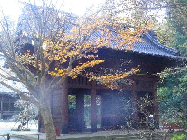 04-1)  15.12.12 鎌倉「妙本寺」紅葉の最盛期