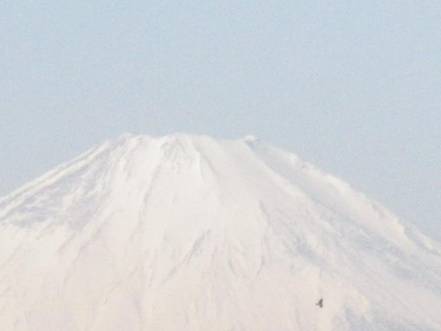 02-2-zoom3) 2/3中の富士山