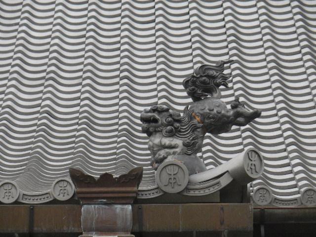 01-4) 16.02.24 本堂改修の足場を解かれた 鎌倉「本覚寺」、祝うように咲く梅と河津桜。
